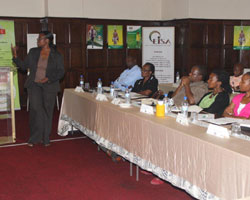 ZEC Chief Legal Officer presenting electoral amendments at the workshop